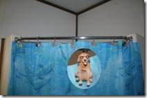 Shower curtain with dogs