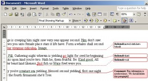 Microsoft Word document with hidden data displayed.