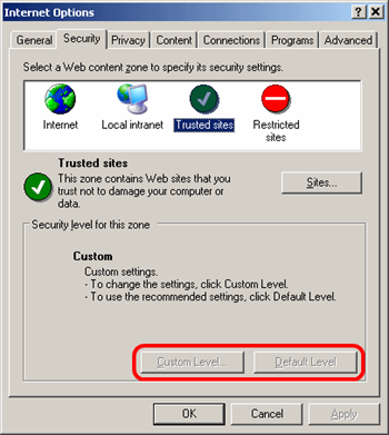 Internet Options - Security - Custom settings
