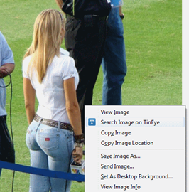 Ines Sainz - TinEye search
