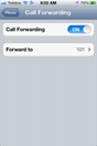 iPhone Call Forward Properties